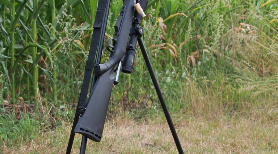 Savage Arms Model 25 Walking Varminter 17