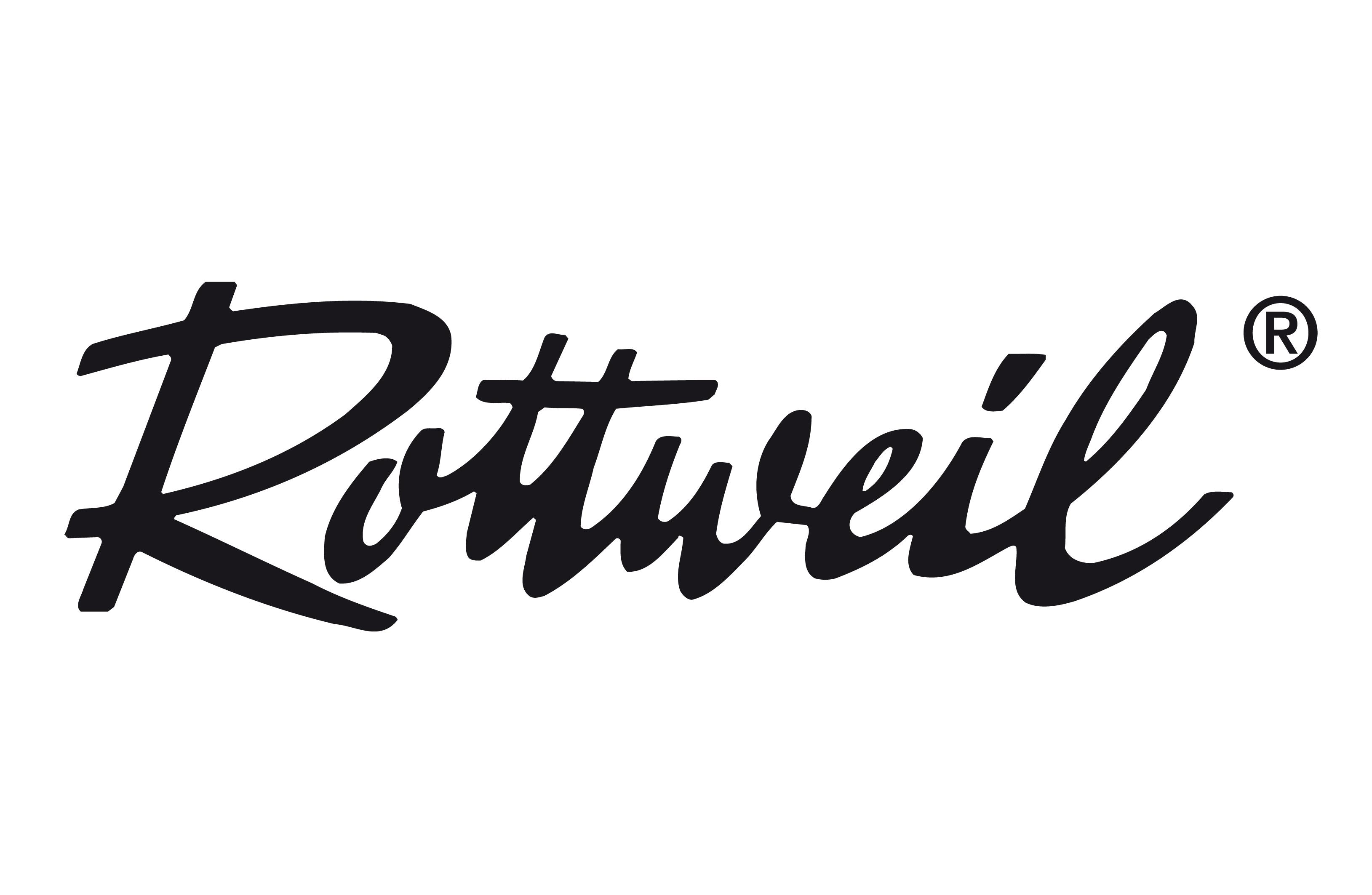 Αποτέλεσμα εικόνας για rottweil logo