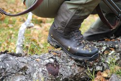 Hunting boot on a wood log