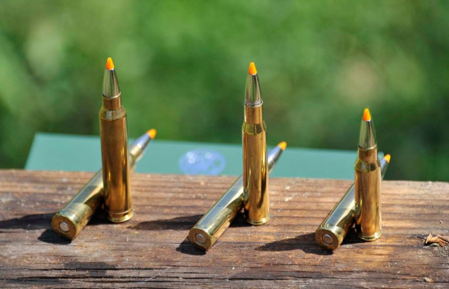 A .308 Win. cartridge, .300 Winchester Magnum and .30 06 Springfield