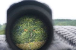 The head-up display on the Swarovski dS 5-25×52 P rifle scope projects the distance to the target and the corrected aim point