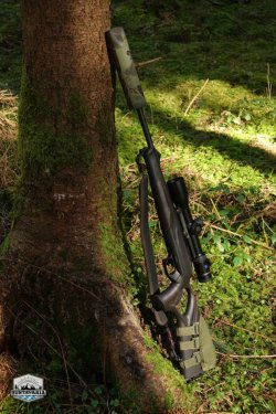 Blaser R8 Professional Success hunting rifle with riflescope ZEISS VICTORY V8 in the woods