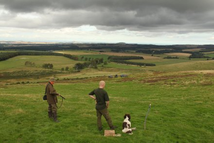 Hunters waiting to shoot rabbits