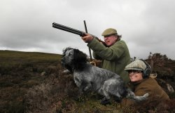 Couple in grouse butt with spaniel