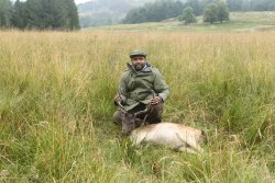 USA Hunter with dead sika
