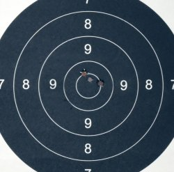 Grouping at 200 meters with Remington Model 700 XCR II