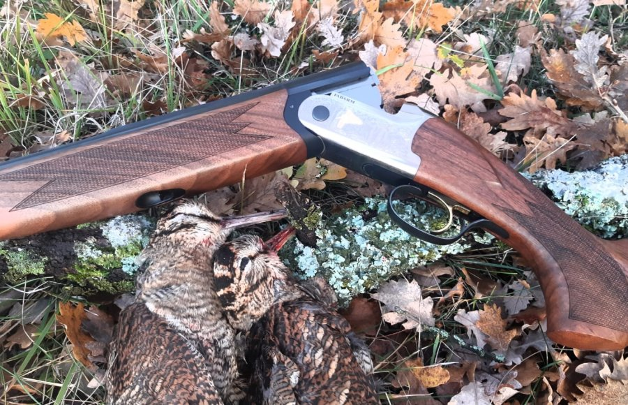 Woodcock hunting with the Fabarm Elos B2 Classic Paradox Gold over-under