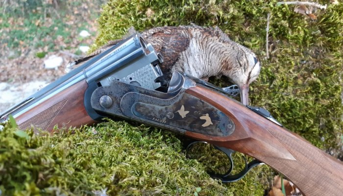 fausti-stefano-arms: Woodcock hunting with the Fausti Class SLX over/under shotgun