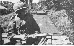 An infantryman and his M14