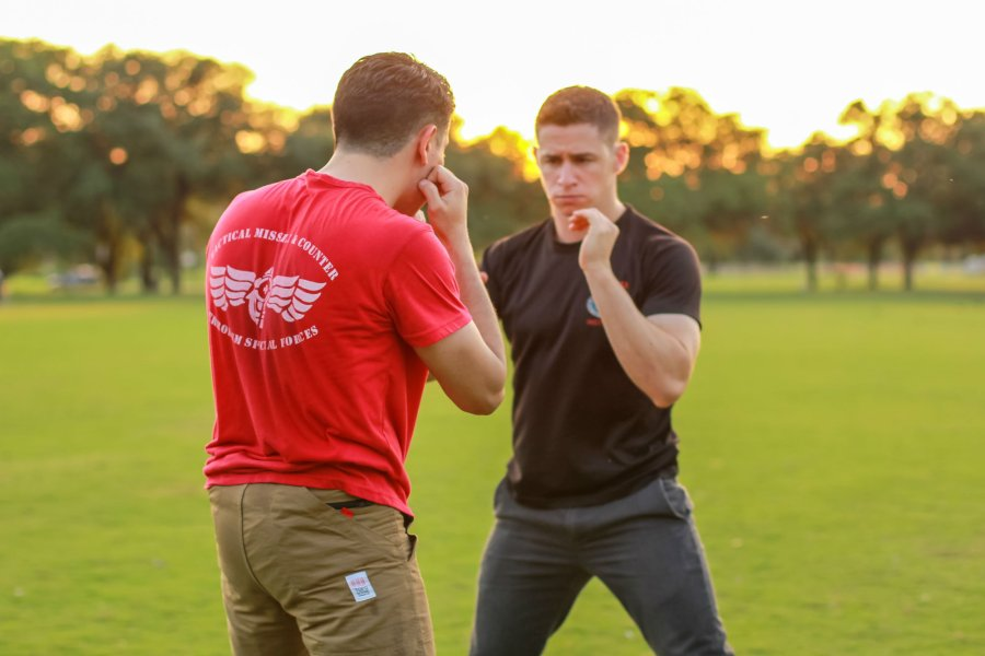 Combat Stance: training of unarmed combat