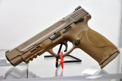 S&W M&P 9 M2.0 pistol in the FDE color variant