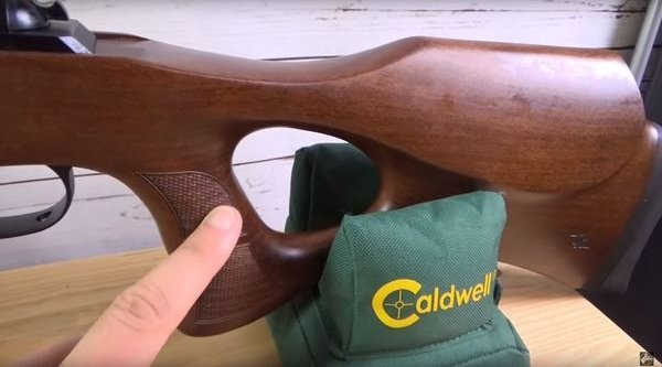thumbhole stock of the airgun DIANA 56 Target Hunter