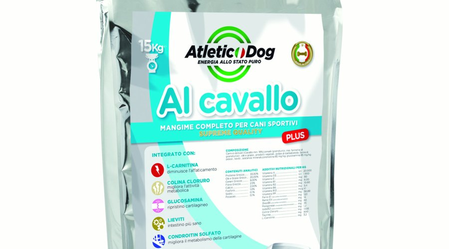 Sacco Atletic Dog Plus al cavallo